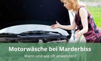 Motorwäsche bei Marderbiss