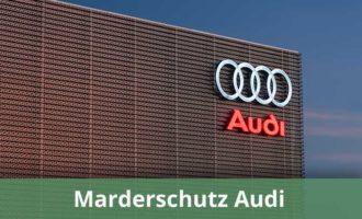 Marderabwehr Audi