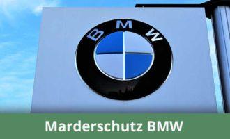 Marderabwehr für BMW