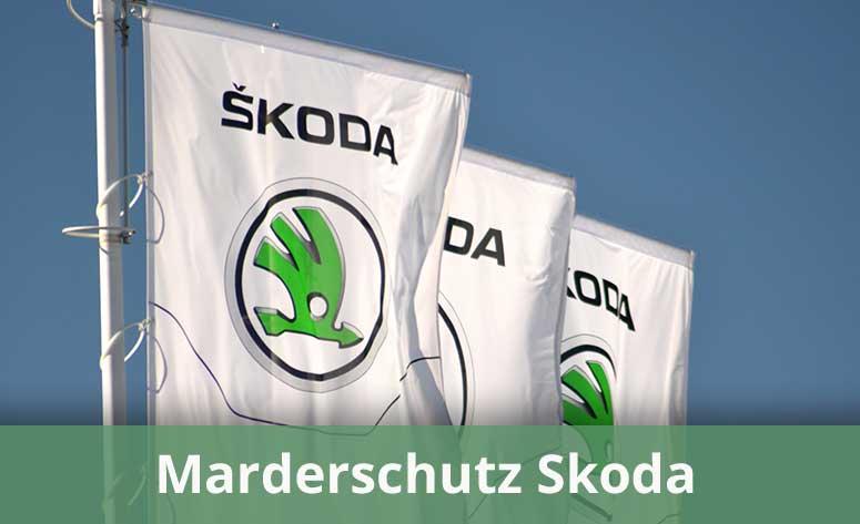 Marderschutz für Skoda