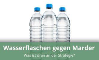 Wasserflaschen zur Marderabwehr